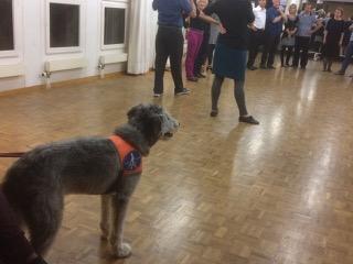 tango-workshop-und-milongabesuch-mit-blinden-und-sehbehinderten